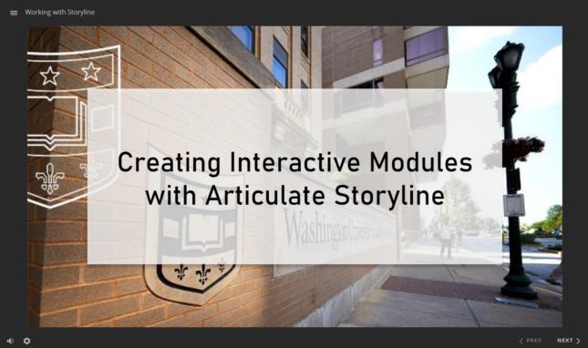 Storyline Interactive Module